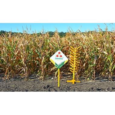 Семена кукурузы ДМС Супер (ФАО 220)