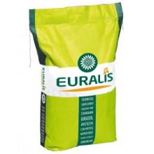 Семена подсолнечника ЕС БЕЛЛА Euralis