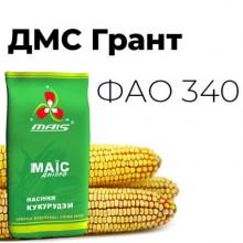Семена кукурузы ДМС Грант
