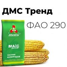 Семена кукурузы ДМС Тренд (ФАО 290)