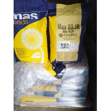 Семена подсолнечника MAS 80.IR АКЦІЯ MAS