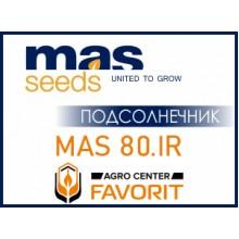 Семена подсолнечника MAS 80.IR