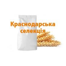 """Озимая пшеница """"Безостая 100"""" Краснодарская селекция с\элита"""